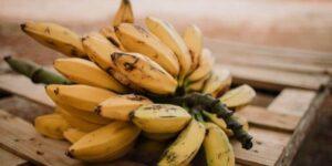 Banana in juicer